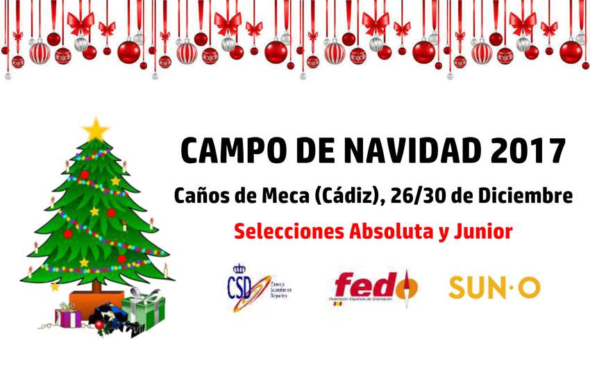 Campo de Navidad 2017